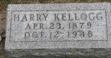 KELLOGG, HARRY - Burt County, Nebraska | HARRY KELLOGG - Nebraska Gravestone Photos