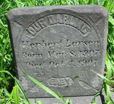 LARSEN, HERBERT - Burt County, Nebraska | HERBERT LARSEN - Nebraska Gravestone Photos