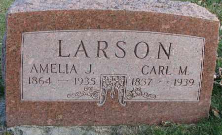 LARSON, CARL M. - Burt County, Nebraska | CARL M. LARSON - Nebraska Gravestone Photos