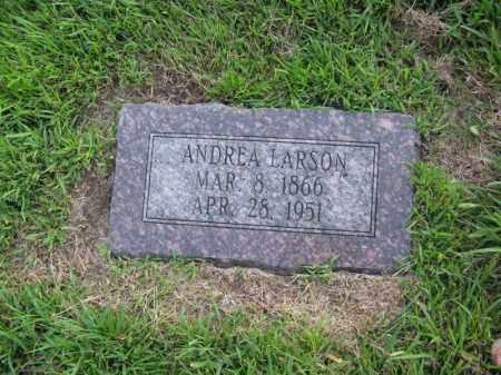 LARSON, ANDREA - Burt County, Nebraska | ANDREA LARSON - Nebraska Gravestone Photos