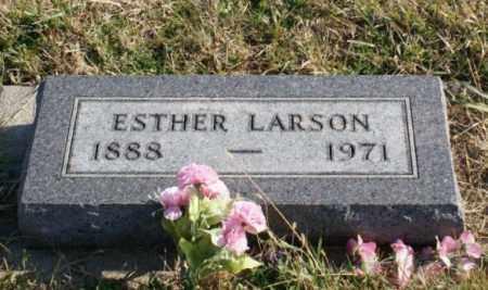 LARSON, ESTHER - Burt County, Nebraska | ESTHER LARSON - Nebraska Gravestone Photos