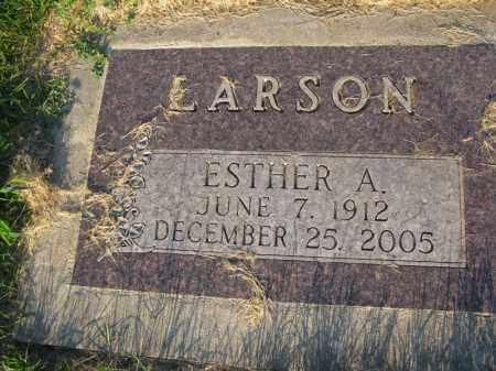 LARSON, ESTHER A. - Burt County, Nebraska | ESTHER A. LARSON - Nebraska Gravestone Photos