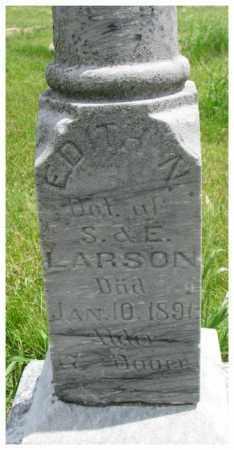 LARSON, ELLEN - Burt County, Nebraska | ELLEN LARSON - Nebraska Gravestone Photos