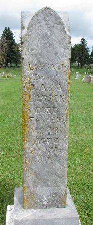 LARSON, LAURA M. - Burt County, Nebraska | LAURA M. LARSON - Nebraska Gravestone Photos