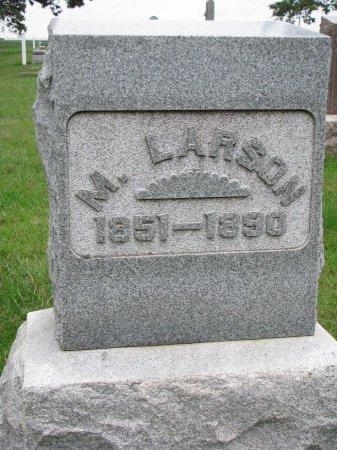 LARSON, MATTS - Burt County, Nebraska   MATTS LARSON - Nebraska Gravestone Photos