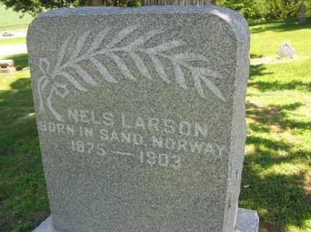LARSON, NELS - Burt County, Nebraska | NELS LARSON - Nebraska Gravestone Photos