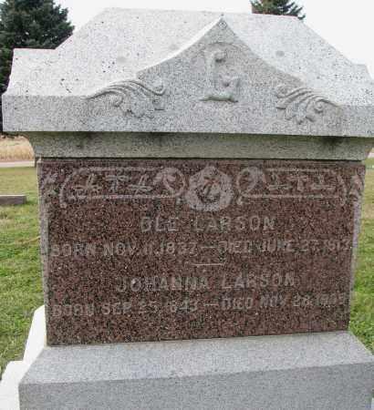LARSON, JOHANNA - Burt County, Nebraska | JOHANNA LARSON - Nebraska Gravestone Photos