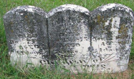 LEWIS, KATIE - Burt County, Nebraska | KATIE LEWIS - Nebraska Gravestone Photos