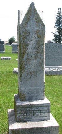 LUCE, CHARLES - Burt County, Nebraska | CHARLES LUCE - Nebraska Gravestone Photos
