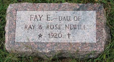 NEWILL, FAY E. - Burt County, Nebraska | FAY E. NEWILL - Nebraska Gravestone Photos