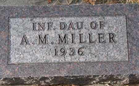 MILLER, A.M. - Burt County, Nebraska | A.M. MILLER - Nebraska Gravestone Photos