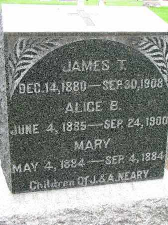 NEARY, JAMES T. - Burt County, Nebraska | JAMES T. NEARY - Nebraska Gravestone Photos