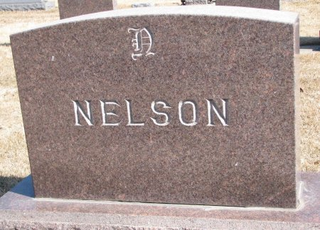 NELSON, *FAMILY MONUMENT - Burt County, Nebraska   *FAMILY MONUMENT NELSON - Nebraska Gravestone Photos