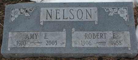 NELSON, ROBERT E. - Burt County, Nebraska   ROBERT E. NELSON - Nebraska Gravestone Photos