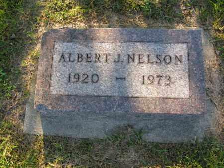 NELSON, ALBERT J. - Burt County, Nebraska | ALBERT J. NELSON - Nebraska Gravestone Photos