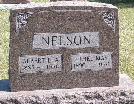 NELSON, ALBERT LEA - Burt County, Nebraska | ALBERT LEA NELSON - Nebraska Gravestone Photos