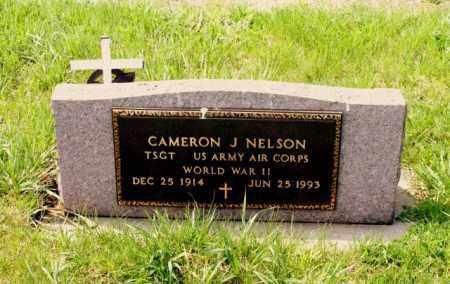 NELSON, CAMERON J. - Burt County, Nebraska | CAMERON J. NELSON - Nebraska Gravestone Photos