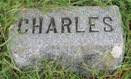 NELSON, CHARLES A. (FOOT STONE) - Burt County, Nebraska | CHARLES A. (FOOT STONE) NELSON - Nebraska Gravestone Photos