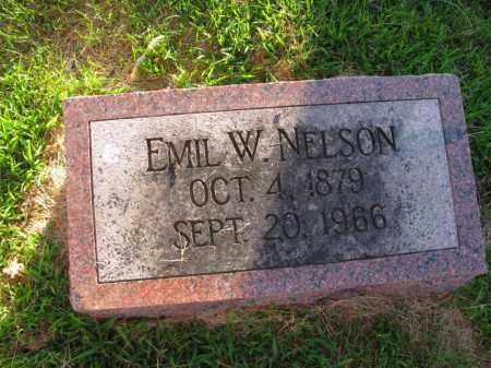 NELSON, EMIL W. - Burt County, Nebraska | EMIL W. NELSON - Nebraska Gravestone Photos