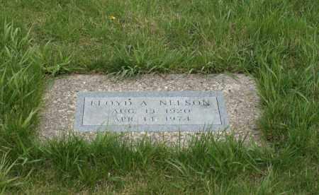 NELSON, FLOYD A. - Burt County, Nebraska   FLOYD A. NELSON - Nebraska Gravestone Photos