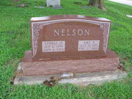 NELSON, AMY H. - Burt County, Nebraska | AMY H. NELSON - Nebraska Gravestone Photos