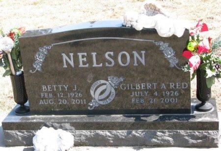 NELSON, BETTY J. - Burt County, Nebraska | BETTY J. NELSON - Nebraska Gravestone Photos
