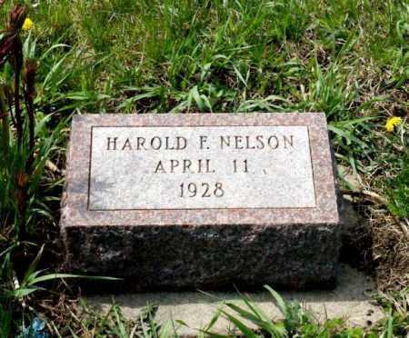NELSON, HAROLD F. - Burt County, Nebraska   HAROLD F. NELSON - Nebraska Gravestone Photos