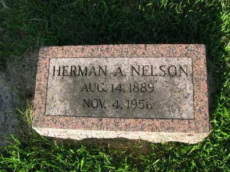 NELSON, HERMAN A. - Burt County, Nebraska | HERMAN A. NELSON - Nebraska Gravestone Photos