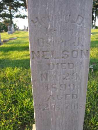 NELSON, HEDWIG  D. - Burt County, Nebraska   HEDWIG  D. NELSON - Nebraska Gravestone Photos