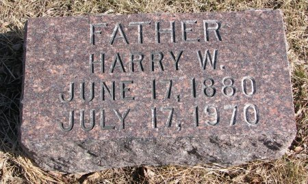 NELSON, HARRY W. - Burt County, Nebraska | HARRY W. NELSON - Nebraska Gravestone Photos