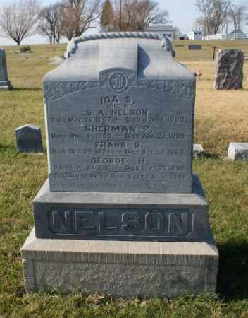 NELSON, SHERMAN P. - Burt County, Nebraska | SHERMAN P. NELSON - Nebraska Gravestone Photos
