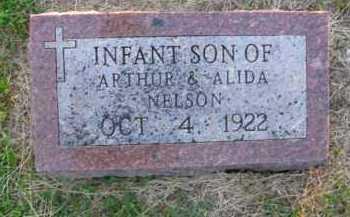NELSON, INFANT SON - Burt County, Nebraska | INFANT SON NELSON - Nebraska Gravestone Photos
