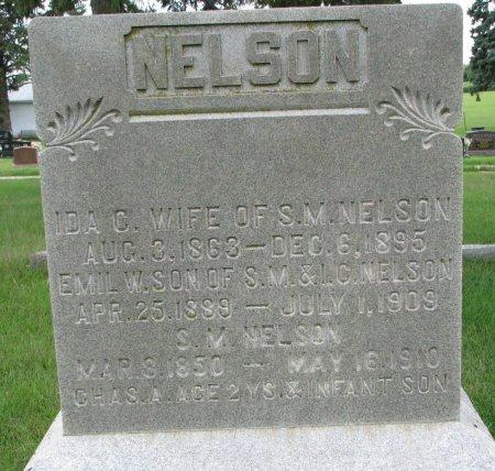 NELSON, CHARLES A. - Burt County, Nebraska | CHARLES A. NELSON - Nebraska Gravestone Photos