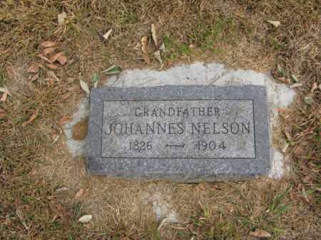 NELSON, JOHANNES - Burt County, Nebraska | JOHANNES NELSON - Nebraska Gravestone Photos
