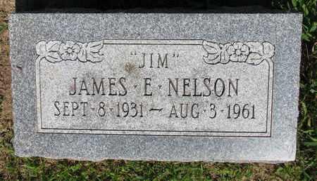 NELSON, JAMES E. - Burt County, Nebraska | JAMES E. NELSON - Nebraska Gravestone Photos