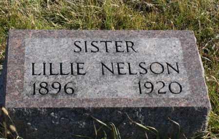 NELSON, LILLIE - Burt County, Nebraska   LILLIE NELSON - Nebraska Gravestone Photos