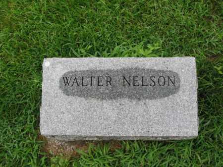 NELSON, WALTER - Burt County, Nebraska | WALTER NELSON - Nebraska Gravestone Photos