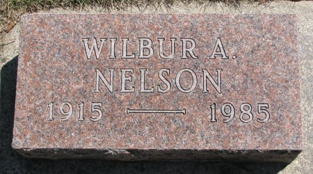NELSON, WILBUR A. - Burt County, Nebraska | WILBUR A. NELSON - Nebraska Gravestone Photos