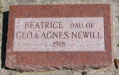 NEWILL, BEATRICE - Burt County, Nebraska | BEATRICE NEWILL - Nebraska Gravestone Photos