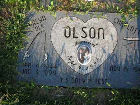 OLSON, ARLYN (OLE) - Burt County, Nebraska | ARLYN (OLE) OLSON - Nebraska Gravestone Photos