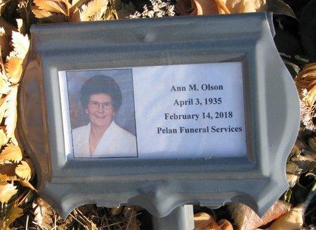 ANDERSEN OLSON, ANN MARIE - Burt County, Nebraska   ANN MARIE ANDERSEN OLSON - Nebraska Gravestone Photos