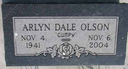 OLSON, ARLYN DALE - Burt County, Nebraska | ARLYN DALE OLSON - Nebraska Gravestone Photos
