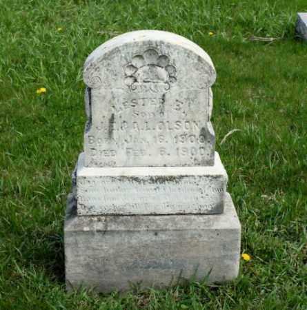 OLSON, LESTER E. - Burt County, Nebraska | LESTER E. OLSON - Nebraska Gravestone Photos