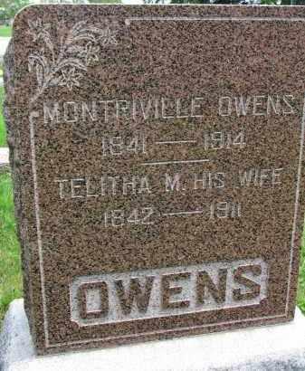 OWENS, TELITHA M. - Burt County, Nebraska | TELITHA M. OWENS - Nebraska Gravestone Photos
