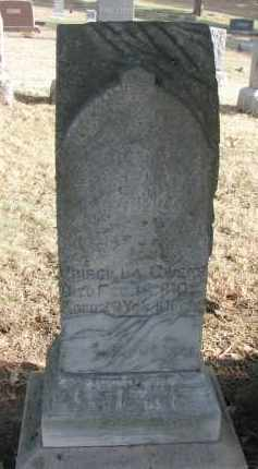 OWENS, PRISCILLA - Burt County, Nebraska | PRISCILLA OWENS - Nebraska Gravestone Photos