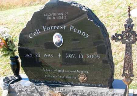 PENNY, COLT FORREST - Burt County, Nebraska | COLT FORREST PENNY - Nebraska Gravestone Photos