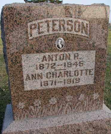 PETERSON, ANN CHARLOTTE - Burt County, Nebraska | ANN CHARLOTTE PETERSON - Nebraska Gravestone Photos
