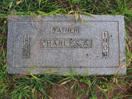 PETERSON, CHARLES A. - Burt County, Nebraska | CHARLES A. PETERSON - Nebraska Gravestone Photos