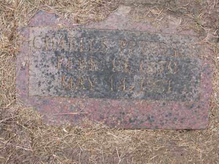 PETERSON, CHARLES - Burt County, Nebraska | CHARLES PETERSON - Nebraska Gravestone Photos