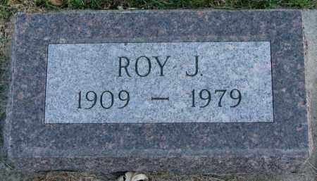PETERSON, ROY J. - Burt County, Nebraska | ROY J. PETERSON - Nebraska Gravestone Photos